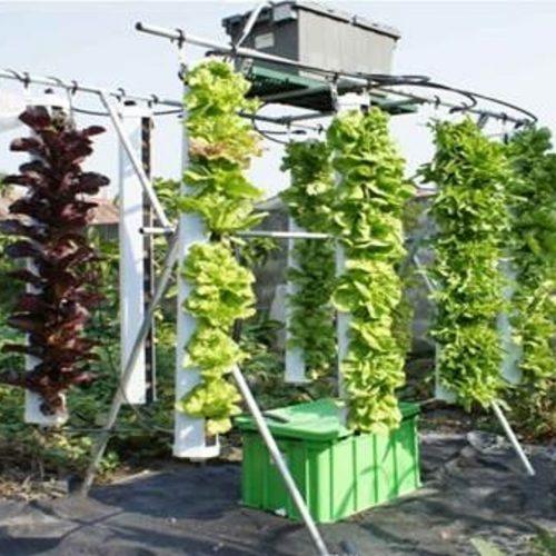 垂直栽培  美觀有特色